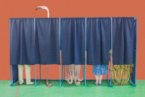 Voting For The Future